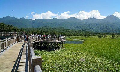 Un voyage au Japon